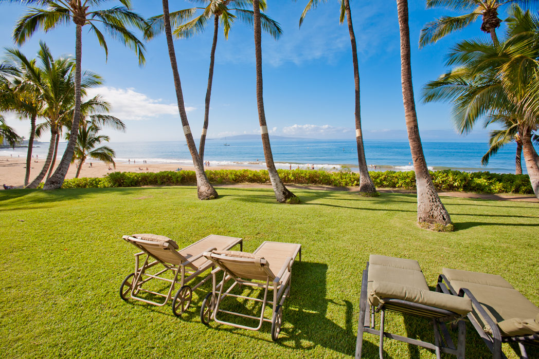 Grassy lawn with oceanview