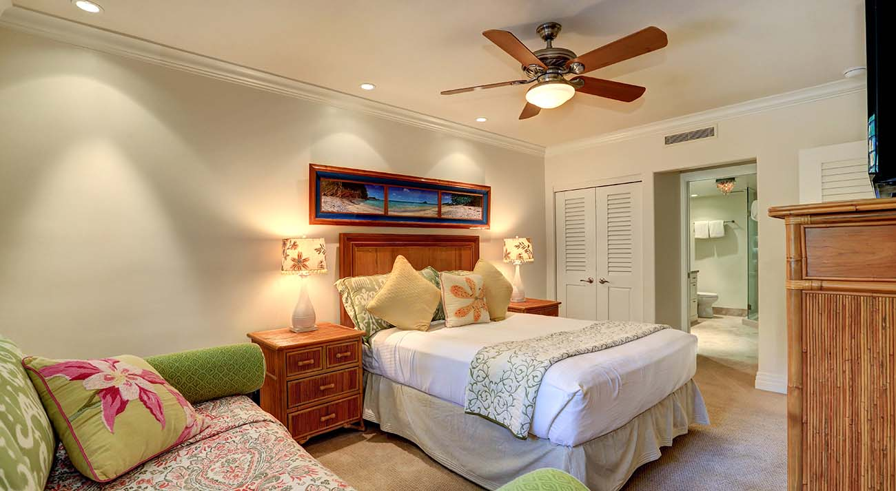 Guest bedroom, queen bed
