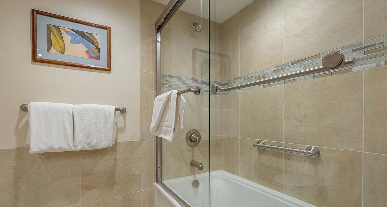 Guest bathroom, shower tub combo