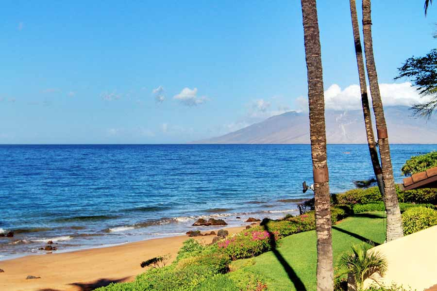 Makena Surf B-205 beach and ocean views