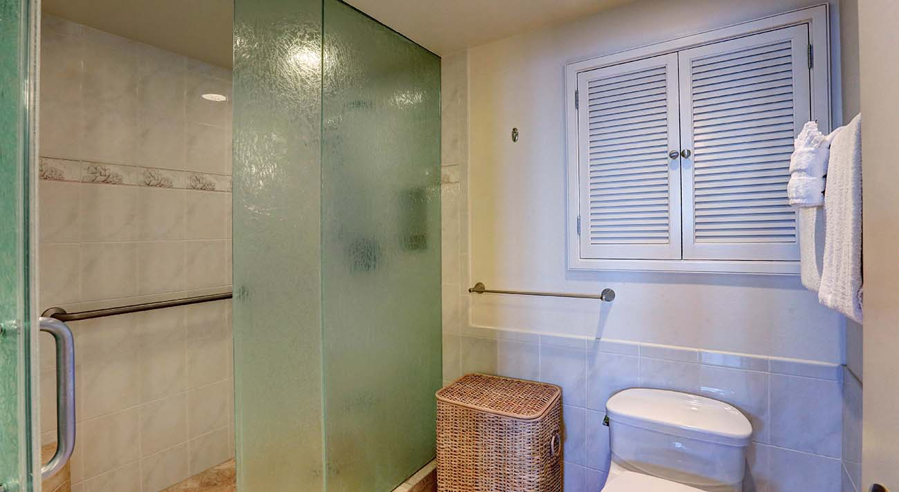 Master bathroom, shower stall